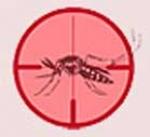 Ministro da Saúde pede apoio de lideranças religiosas no combate à dengue
